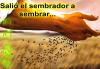"""""""Salió un sembrador a sembrar"""" - Domingo 15 A"""