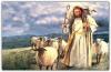 Domingo 24 C - La oveja perdida