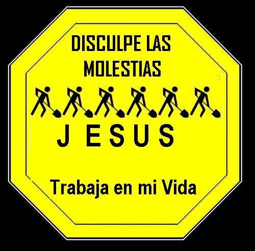 31 domingo ordinario: