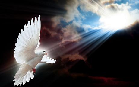 El Espíritu Santo viene en nuestra ayuda