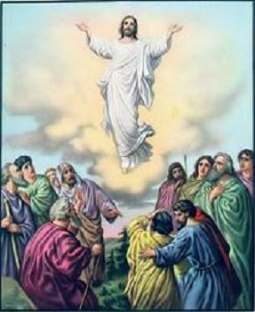 subió al cielo está sentado a la derecha del Padre