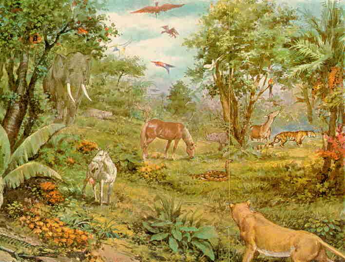 Tu baby yova la creacion del mundo for Jardin del eden